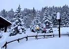 Livigno, cadono 40 cm di neve e il paesaggio è da cartolina natalizia