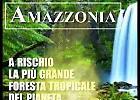 #prayforamazonia,  l'Amazzonia brucia: i numeri del polmone del mondo