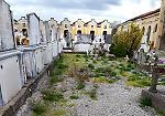 GALLERY - La denuncia: 'Degrado al cimitero di Vicobellignano'