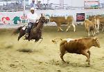 FOTO Salone del Cavallo Americano a Cremona (25 maggio 2018)