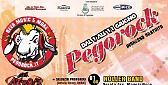 Pegorock - 27° Festival Di Pegonaga (MN)