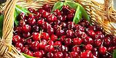 Villanova sull'Arda (PC). Festa delle ciliegie, con musica, spettacoli, mercato