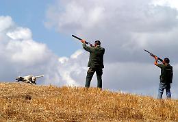 """Sulla caccia """"la Lega tenta di forzare la mano"""""""
