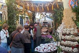 'Fiera dell'aglio' a Monticelli d'Ongina, da giovedì 3