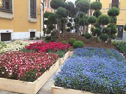 Cremona si veste di verde con Le Invasioni Botaniche