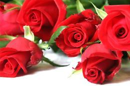 San Valentino:  'Scrivete le vostre parole d'amore' I PREMIATI