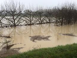 L'Arda esonda, chiusa la provinciale Due Ponti a Villanova
