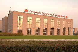 Consorzio Casalasco e Arp insieme: nasce il colosso del pomodoro