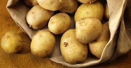Mercatini di piazza Fulcheria, sabato 9  protagonista la patata