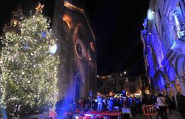 Con l'accensione del grande  albero è già Natale