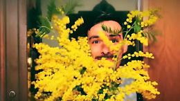 8 marzo: uomini non regalate mimose, basta un po' di educazione
