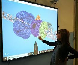 Anguissola, ecco il super laboratorio di scienze naturali
