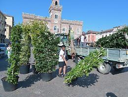 Listone, un giardino grazie ai commercianti