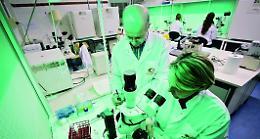 Dal Giappone sì a embrioni uomo-topo per ottenere organi