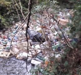 Parco Oglio, marea di plastica in un fosso: pulizia e indagini