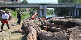 Oglio, ponte tra 2 paesi sicuro. Via tronchi e detriti dai piloni