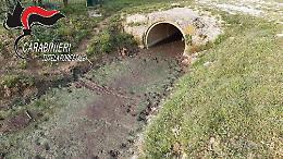 Carabinieri Forestale, attività di tutela delle acque superficiali del territorio