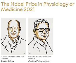 Il Nobel per la medicina agli studi sui recettori di temperatura e tatto