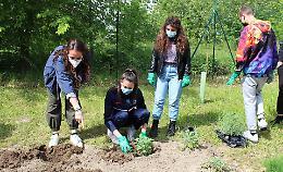 Orti didattici, profumi e colori nel giardino dello Sraffa