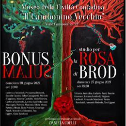 Studio per la Rosa di Brod VarieAzioni Teatro