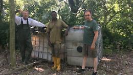 Recuperati grossi contenitori portati in zona golenale dalla piena del Po