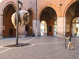Un elefante in Cortile Federico II, la  curiosità dei cremonesi