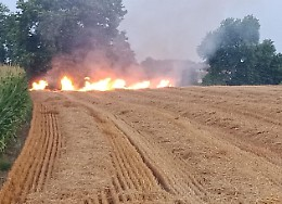 Incendio doloso in un campo, torna l'incubo piromane seriale