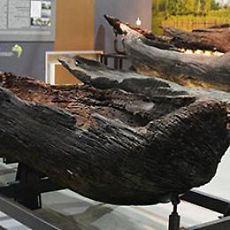 Domenica al museo: Sezione di Archeologia fluviale