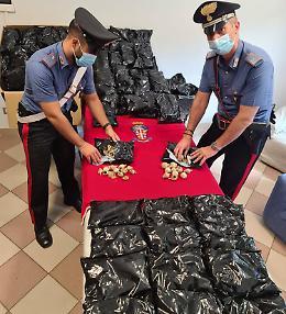 Sequestrati 27 chili di fiori di papavero da oppio, denunciato 39enne