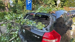 Crolla un grosso ramo, danneggiate due auto e  la recinzione del castello