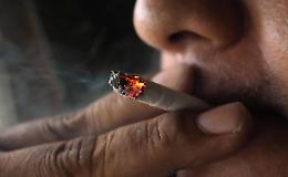 Oms, nel mondo un miliardo di fumatori. Causano 8 milioni di morti l'anno