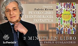 Fulvio Ervas, 'ortolano' tra le farfalle Monarca
