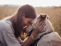 Giornata mondiale del cane, 10 idee per farli felici e ringraziarli