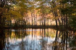 La musica dei fiumi