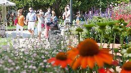 """Con """"Le Invasioni Botaniche"""" Cremona diventa giardino d'autunno"""