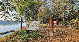 Parco golena, al via un importante progettodi riqualificazione forestale