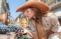 La «magia» di piante e fiori nel cuore di Cremona. Artigianato in vetrina