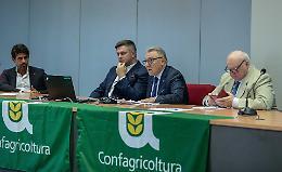 Suinicoltura, allarme degli allevatori: «Schiacciati dai burocrati»