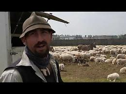 """Noi, pastori da generazioni"""