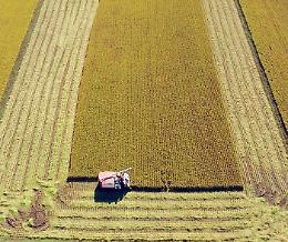 Ue presenterà strategia di sostegno 'ad hoc' per aree rurali