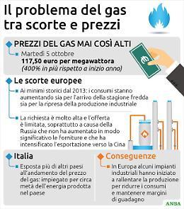 L'Europa punta a un'alleanza volenterosi contro il caro-prezzi del gas