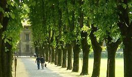 La strada panoramica dei ciliegi