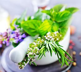 Cucinare in autunno con le erbe spontanee: ricette e curiosità
