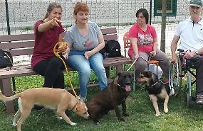 Al parco La cuccia e il nido pet therapy con 'Cani in famiglia'