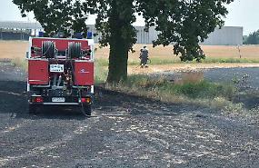 Fiamme in un campo di stoppie, pompieri in azione ad Agoiolo