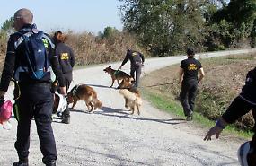 FOTO Le ricerche del 14enne scomparso a Quintano