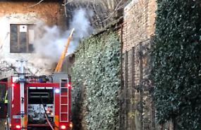 Ramaglie prendono fuoco, pompieri in azione in un cortile
