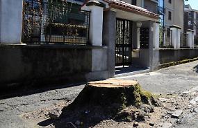 Via Bacchetta, taglio irregolare