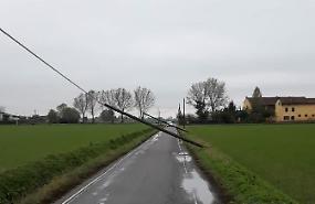 Il forte vento fa cadere i pali della linea telefonica