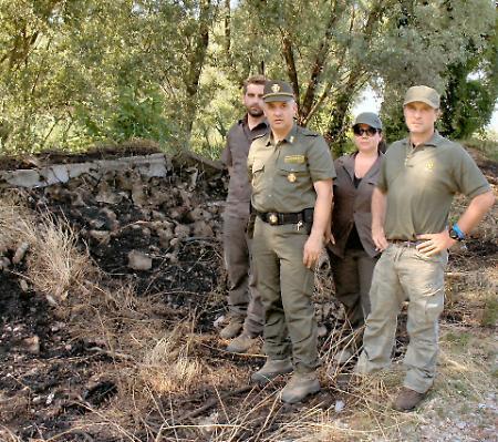 Parco dell'Oglio avvolto dalle fiamme: si sospetta un incendio doloso